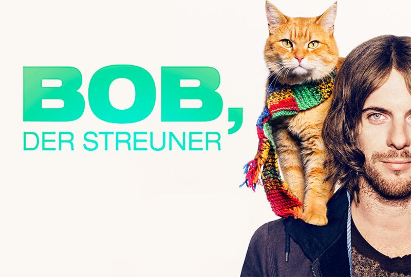Bob-der-Streuner_TS_800x540